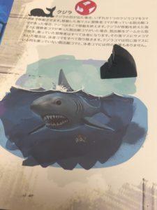 アイランド サメ